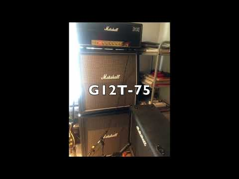 G12T-75 or Greenback for a Marshall YJM100 ?