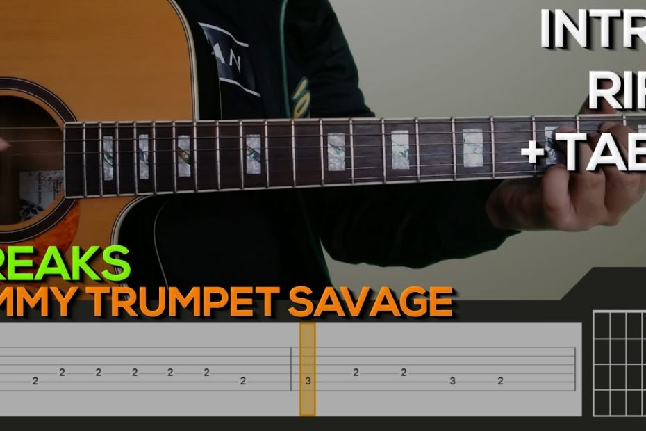 Timmy Trumpet Savage - Freaks Guitar Tutorial [INTRO, RIFF + TABS]
